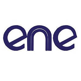 Мультиконтроллеры ENE