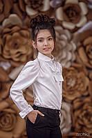 «Блуза Classic» 3651-1