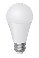 Светодиодная лампа Biom ВТ-516 A65 15W E27 4500K матовая