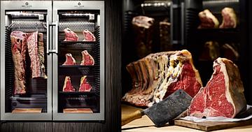 Ферментаторы мяса - инновация и вкусовое совершенство для ресторанного/отельного бизнеса