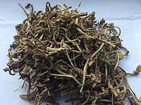 Копытень корень 50 гр
