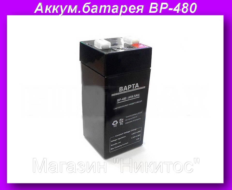"""Аккумулятор для весов BP-480 4V4.5AH,Аккумуляторная батарея BP-480  - Магазин """"Никитос"""" в Одессе"""