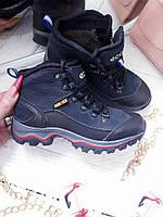 Детские подростковые зимние ботинки Ecco Biom