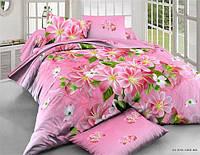 Полуторный набор постельного белья 150*220 Полиэстер №092 Черешенка™