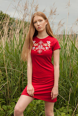 Сукня Лісова пісня золота на червоному – короткий рукав