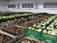 Оборудование для хранения овощей, грибов и зелени