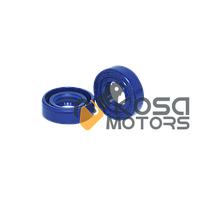 Сальник FS-55