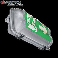 Светильник взрывозащищенный BASET-N-I-PC-109, 1x9W, 3h, зона 2,22, фото 1