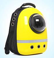 Каркасный рюкзак с иллюминатором для путешествий с котом