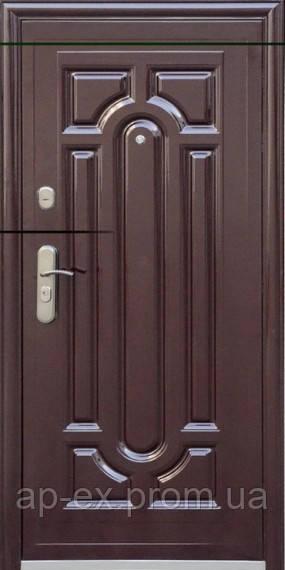 Дверь входная металлическая TP-C  140 + стандарт 2050x860/960x70 - АПЕКС-интернет-магазин в Днепре