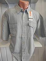 Рубашка мужская ARMA короткий рукав, лен батал, 002\