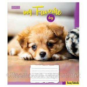 Зошит 18листов , 1В Favorite Dog -17