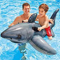 Детский плотик для плавания Акула Intex 57525 173*107см, надувной плотик, надувная игрушка акула