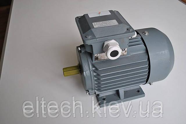 Электродвигатель асинхронный Lammers 13AA-90L-6-В3-1,1квт, лапы, 1000об/мин.