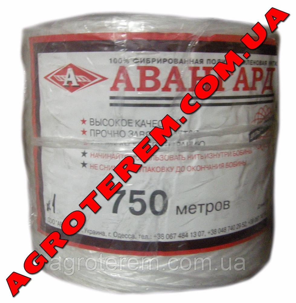Шпагат Авангард 1 кг - Agroterem в Одессе