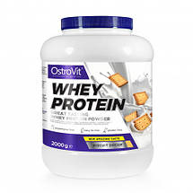 Whey Protein Ostrovit, фото 3