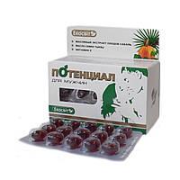 « Потенциал для мужчин» - эффективный фитопродукт, 60 капсул