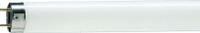Люминесцентная лампа philips tl-d super 80 g13 1500mm 58w/840 1sl 25 master (927922084023)