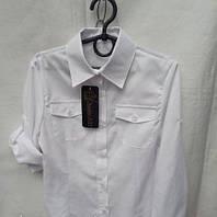 Блуза рубашка для девочки 033