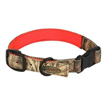Ошейник Avery® Reversible Dog Collar