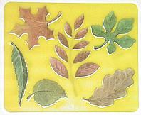Трафарет Листя дерев 10С527-08 Луч