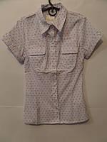 Блуза короткий рукав лилия, фото 1