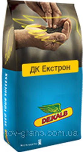 """Семена Рапса ДК Екстром """" DK Exstrom """" ( Dekalb )"""