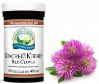 Red Clover/ Красный Клевер • Мягкий имуностимулятор •  Очищение крови и лимфы