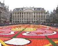В Амстердаме и Париже..привлекали.. зажигали. Тур 7 дней.