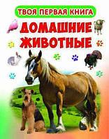 Твоя первая книга. Домашние животные.