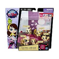 Мини-набор зверюшек Littlest Pet Shop Большая семейка (в ассорт.) Hasbro B1902EU0