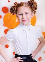Школьная форма для девочекБлузка для девочки 3053/140/ в наличии 140 р., также есть: 122,128,140, Бемби_ЦС