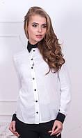 Белая рубашка с черными манжетами