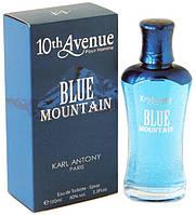 Мужская туалетная вода 10 av.Blue Mountain M 100 ml