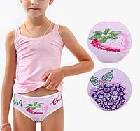 Детские трусики для девочки Турция. Donella 4171WBC. Размер на 1-2 годика. В упаковке 5 шт.