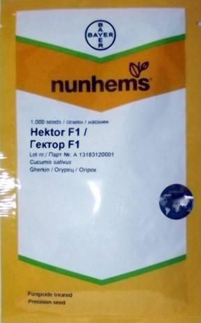 Насіння Огірок Гектор Ф1 Hektor F1 1000 н ПрофПакет Голандія, Nunhems BAYER, фото 2