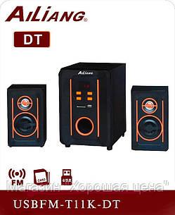 Акустическая система USBFM-T11K DT, фото 2