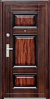 Дверь входная Стандарт TP-C  29 Q лак
