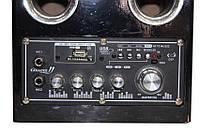 Акустическая система USBFM-52DC!Акция
