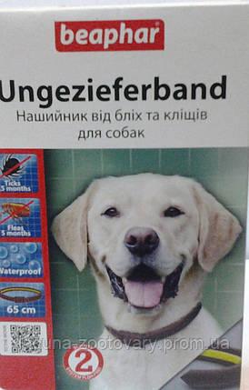 Бифар - Ошейник BEAPHAR от блох и клещей для собак, 65см, фото 2