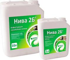 Биофунгицид Нива 2Б природный регулятор роста, 15л