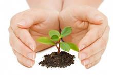 Засоби захисту рослин (ЗЗР)