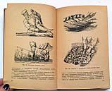 Руководство по приготовлению пищи в воинских частях и учреждениях Советской Армии и Военно-Морского Флота, фото 7
