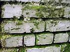 Фасад-актив 1л, (антиплесень), фото 3