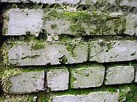 Фасад-актив 1л, антисептик для минеральных поверхностей (готовый)