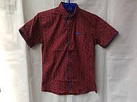 Рубашка подростковаяс коротким рукавомдля мальчика 6-12лет,бордовая