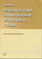Організація судових та правоохоронних органів України. Лапкін А. В.