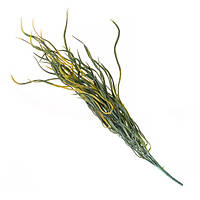 Желтый букет травы для декора  50см