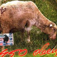 CD-Диск. Zdob Si Zdub - 450 Овець