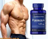 Форсколин - растительный анаболик, повышает свободный тестостерон + программа тренировок